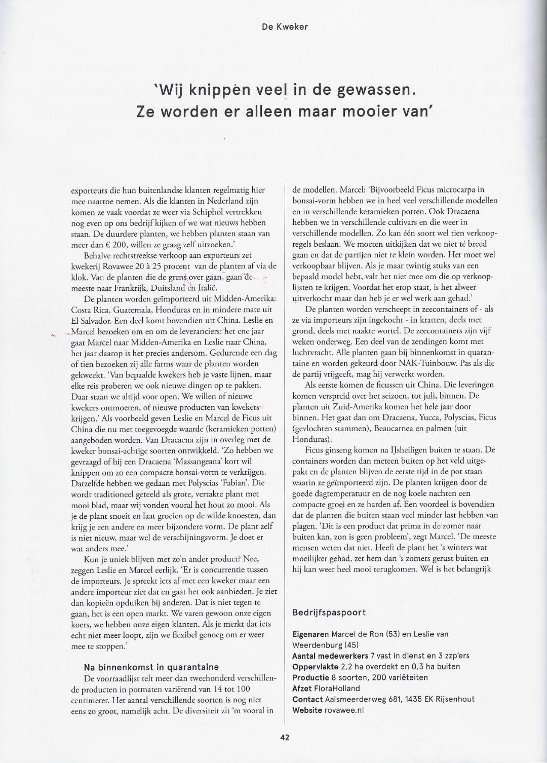 artikel bloem & blad 2 (Groot)