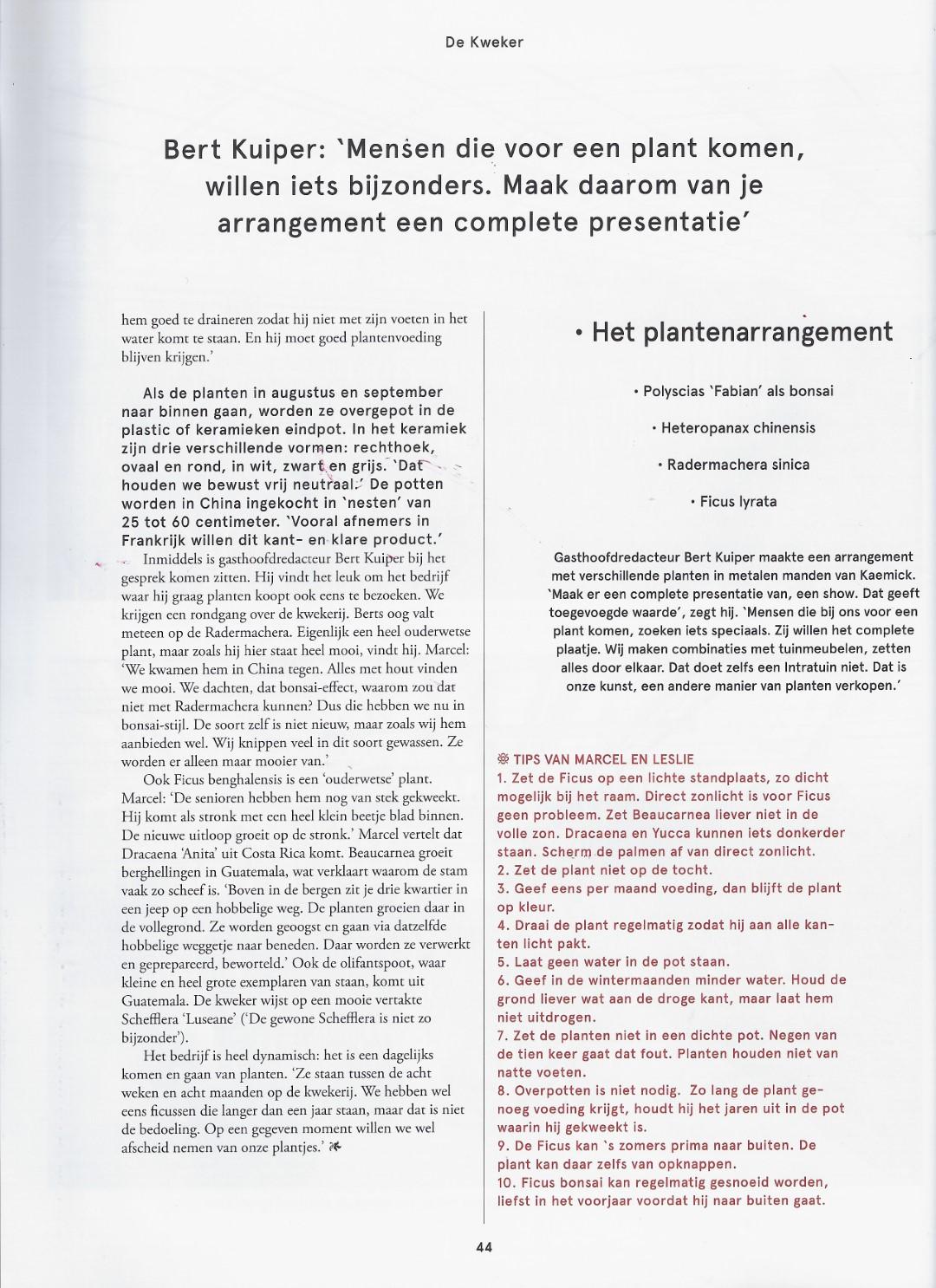 artikel bloem & blad 4 (Groot)